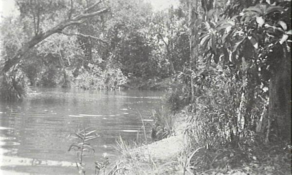 Berry Springs overflow, 1948