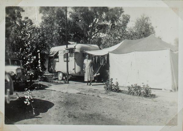 Wilga's Camp