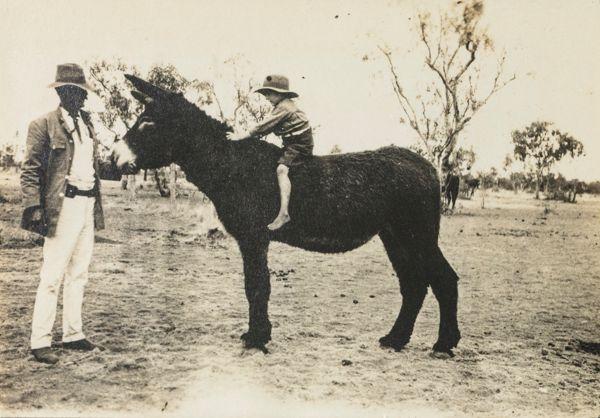 Boy on a donkey