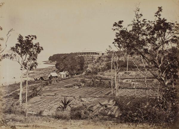 Hospital and Garden