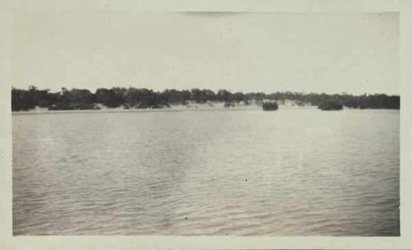 Banks of East Alligator River