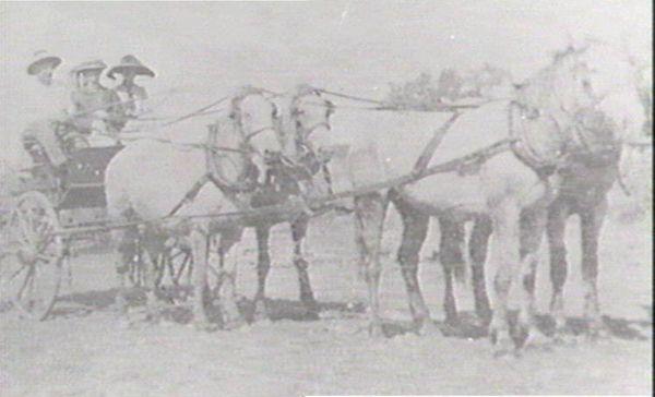 Led by horses