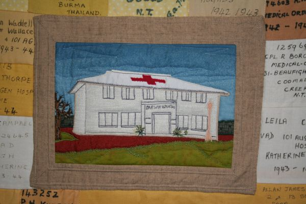 Block of patches from Darwin Commemorative Wall Quilt