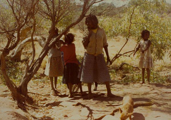 Children in the bush